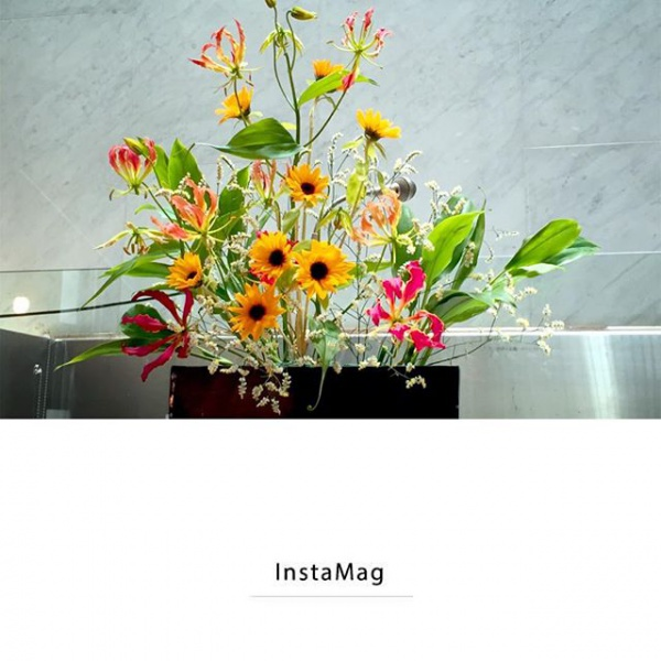 【Instagram】先日の教会の花。涼しげな感じで和みます。#花 #教会