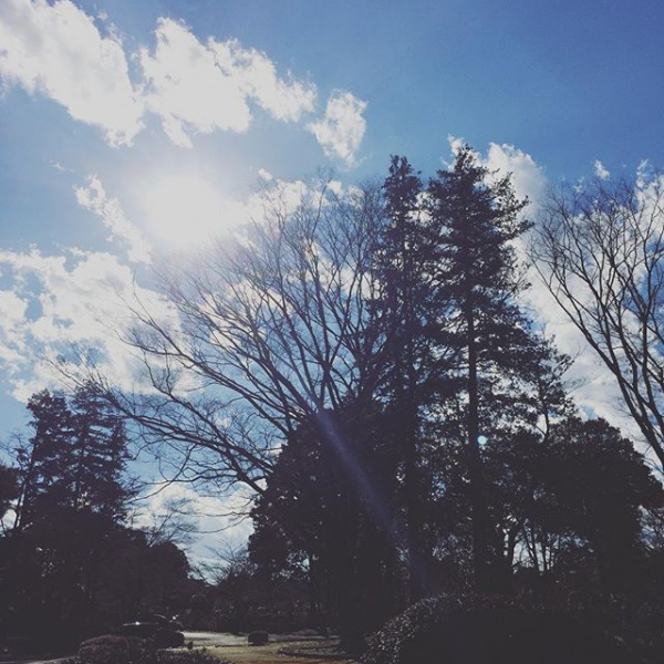 【Instagram】3連休初日。今日は家族で墓参りに行って来ました。母が亡くなってもうすぐ一年。あっという間だなぁという思いと、まだ一年かぁという思いが交錯しつつ、母や祖父母が眠る墓に手を合わせてきました。寂しさがあるけど、母が見守ってくれる事を思って過ごしていきたいです。2016年12月23日 22:15