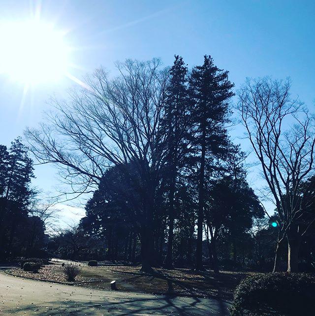 【Instagram】母の命日が近いので、墓参りに来ました。暖かくて気持ちいい昼下がりです。#墓参り
